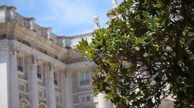Royal Palace at Madrid Spain — 图库视频影像 #12946010