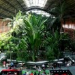 Expect train at Atocha railway station. — Stock Video
