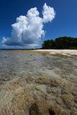отлива и голубое небо и белые облака на корал бич. андаманские острова. — Стоковое фото