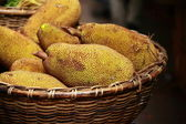Large jack fruit with large spikes at market in India — Stock Photo