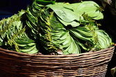 Hindistan yerel pazarda yeşil yaprakları. — Stok fotoğraf