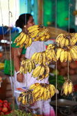 Tropical India Bananas Group Together — Stock Photo