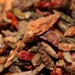 Closeup of red dried chilli background — Stock Photo #15878007