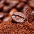 Closeup of coffee beans background — Stock Photo