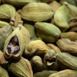 Green cardamom seeds. Aromatic spice.texture background — Stock Photo #16136865