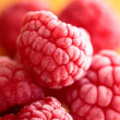 Stock Photo: Beautiful selection of freshly picked ripe red raspberries.