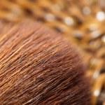 Macro of make-up brush — Stock Photo #16644749