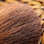 Macro of make-up brush — Stock Photo #16644753