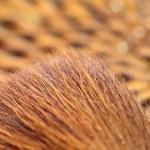 Macro of make-up brush — Stock Photo #16644787