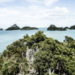 Tropical landscape. Phi-phi island, Thailand.  — Stock Photo