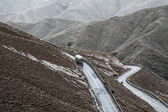 Winding road in Atlas Mountains, Morocco — Stock Photo