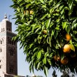 Morocco. Marrakech. Mosque of Koutoubia — Stock Photo