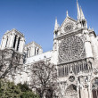 Cathedral Notre Dame de Paris, France, Europe  — Stock Photo