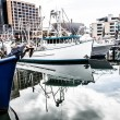 Royalty-Free Stock Photo: View of Hobart Harbour in a Clear Winter Day