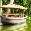 House boat in backwaters near palms in Alappuzha, Kerala, India — Stock Photo #18927023