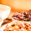 Spices and herbs in bowls. Food and cuisine ingredients. Colorful natural additives.  — Stock Photo