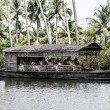 House boat in backwaters near palms in Alappuzha, Kerala, India — Stock Photo #18929925
