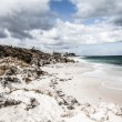 Stock Photo: Scenic view over one of beaches of Rottnest island