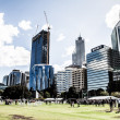 Perth Skyline from Kings Park — Stock Photo #18982331