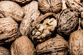 Walnuts in shells, one upon the other — Stock Photo