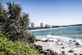 Beach in Goldcoast, Queensland, Australia — Stock Photo
