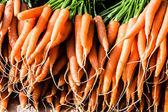 Fresh Carrots At The Local Market — Stock Photo