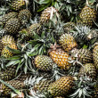 Fresh pineapples in a marketplace — Foto Stock