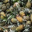 Fresh pineapples in a marketplace — 图库照片