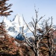 Nature landscape with Mt. Fitz Roy in Los Glaciares National Park, Patagonia, Argentina — Stock Photo