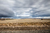 Patagonia landscape in Argentina — Stock Photo