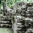 Temples in the Copan Ruinas, Honduras - Stock fotografie