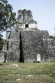 Mayan Ruins of Tikal — Stock Photo
