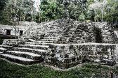 Ruinas mayas de tikal — Foto de Stock