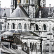 Saint Fin Barre's Cathedral in Cork city, ireland. — Stock Photo