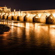Great mosque and roman bridge at night in Cordoba, Spain — Stock Photo #20122403