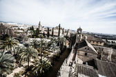 View of Alcazar and Cathedral Mosque of Cordoba, Spain — Stock Photo