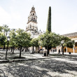 Stock Photo: Mezquit(Mosque) Cathedral bell tower, Cordoba, CordobProvince, Andalusia, Spain, Western Europe.