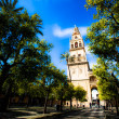Mezquita (Mosque) Cathedral bell tower, Cordoba, Cordoba Province, Andalusia, Spain, Western Europe. — Stock Photo