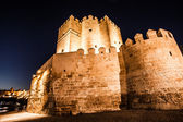Views Calahorra Tower, the Roman bridge and the mosque in Cordoba (Spain), monuments named World Heritage by UNESCO. — Stock Photo