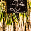 Stock Photo: Neat row of spring onions bundled for sale at market.