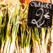 Neat row of spring onions bundled for sale at market. — Stock Photo #24035409