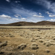 A desert on the altiplano of the andes in Bolivia — Lizenzfreies Foto