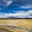 A desert on the altiplano of the andes in Bolivia — Stockfoto