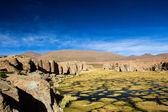 Un désert sur l'altiplano des andes en bolivie — Photo