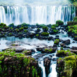 Iguassu Falls, the largest series of waterfalls of the world, view from Brazilian side — Stock Photo #26876169