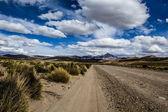 En öken på altiplano anderna i bolivia — Stockfoto