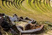 Peru, Pisac (Pisaq) - Inca ruins in the sacred valley in the Peruvian Andes — Stock Photo