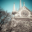 Notre Dame Cathedral, Paris, France. — Stock Photo #27713073