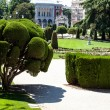 Outstanding cypress trees in Retiro Park in Madrid, Spain — Stock Photo #27772607