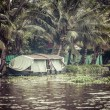 House boat in backwaters near palms in Alappuzha, Kerala, India — Stock Photo #28077969